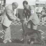Хэндлер держит голову собаки как произведение искусства.
