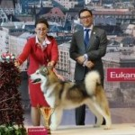 Чемпионат Мира, Венгрия 2013!
