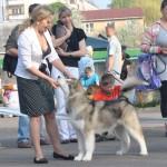 Хмельницкий. Всеукраинская выставка ранга CAC.  2013 г