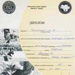Диплом СГ-2 (Собака в городе) – 1 место, САСТ (кандидат в рабочие Чемпионы)