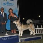 Black Sea Winner 2013