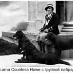 Lorna Katherine Curzon Howe с группой лабрадоров