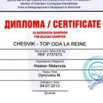 Аляскинский маламут Рейна (Chesvik-Top Oda La Reine) – Чемпион Балканских стран