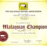 Аляскинский маламут Рейна (Chesvik-Top Oda La Reine) – Чемпион Малайзии