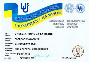 Аляскинский маламут Рейна (Chesvik-Top Oda La Reine) – Чемпион Украины 1