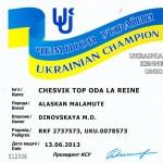 Аляскинский маламут Рейна (Chesvik-Top Oda La Reine) – Чемпион Украины 2