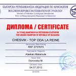 Аляскинский маламут Рейна (Chesvik-Top Oda La Reine) – Гранд Чемпион Болгарии