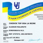Аляскинский маламут Рейна (Chesvik-Top Oda La Reine) – Юный Чемпион Украины