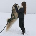 Снежные тренировки