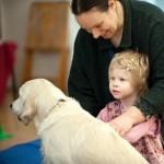 Анималотерапия - лечение животными.