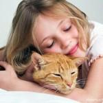 Лечение при помощи кошек