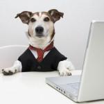 «Язык» собак