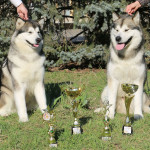 Победители: Гольф и Аделия