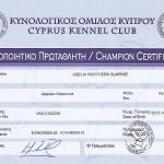 Сертификат Чемпиона Кипра