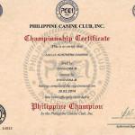 Сертификат Чемпиона Филипин