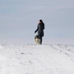 Аляскинский Маламут Ляля (Blessed Star Northern Sunrise)