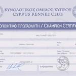 Чемпион Кипра