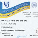 Чемпионский сертификат Рады