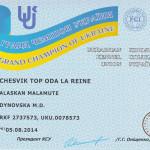 Сертификат Гранд Чемпиона Украины