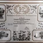 Сертификат Интерчемпиона